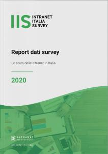 Report IIS 2020